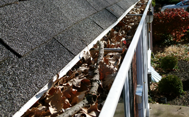 Step by step instructions to keep Your Gutter Clean