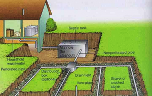 How usually are septic tanks empty, and wherever do the contents go?